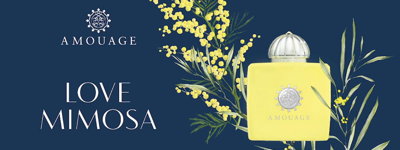 love mimosa home.jpg